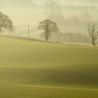 Three Trees, Pewsey Vale