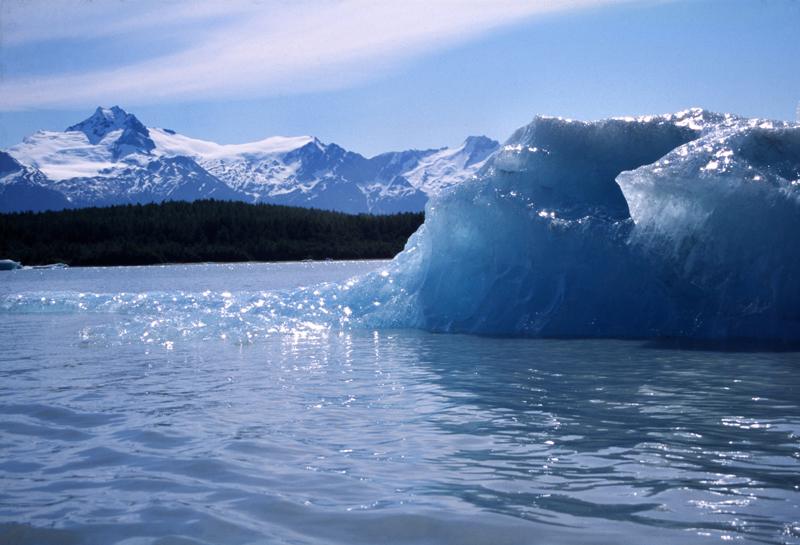 Iceberg - Davidson Glacier