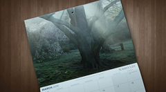 SurreyLife Calendar 2015