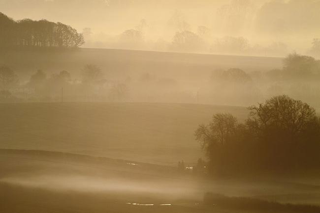 Mist, Pewsey Vale, Wiltshire