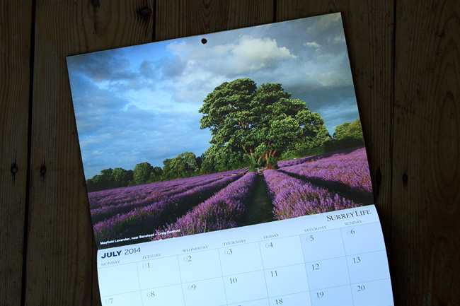 Surrey Life Calendar Competition 2014.