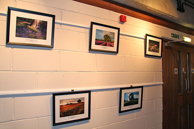 Surrey Life Photo Competition Exhibition, Denbie's Vineyard